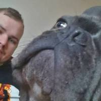Loyal dog dies 15 minutes after owner loses battle with brain cancer