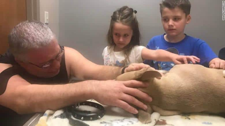 Family mourns hero dog.