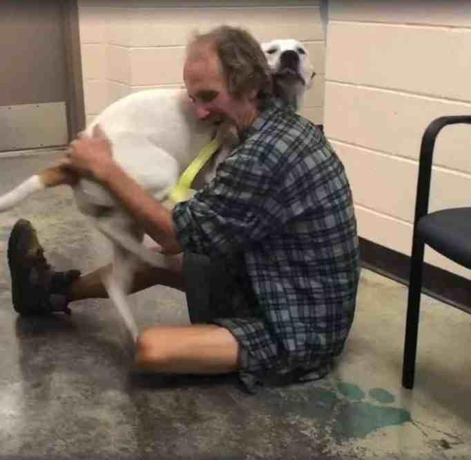 Memphis Animal Services
