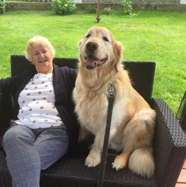 Cheddar who was given up for adoption before sitting with his best friend Jean.