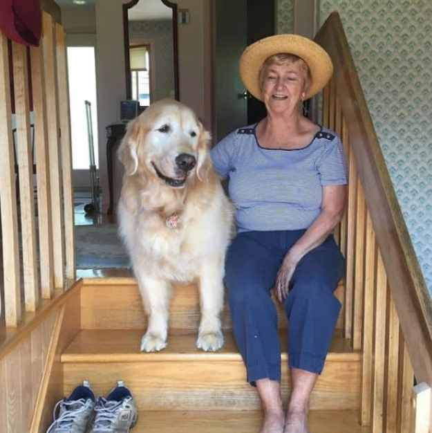 Cheddar with Jean after he was given up for adoption