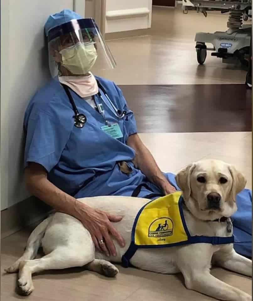 Dr. Susan Ryan with Wynn, a future service dog