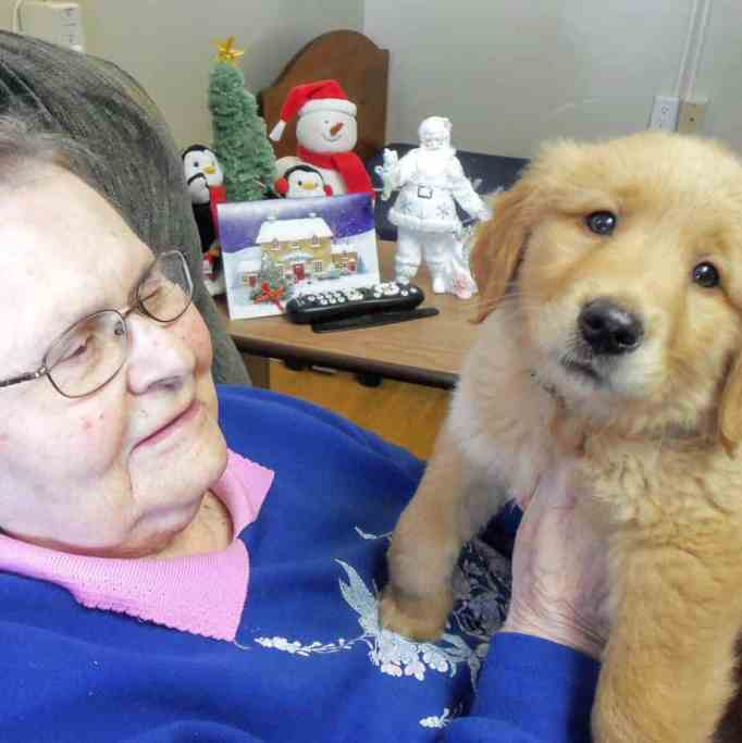 A female nursing home resident holding Gracie the golden retriever