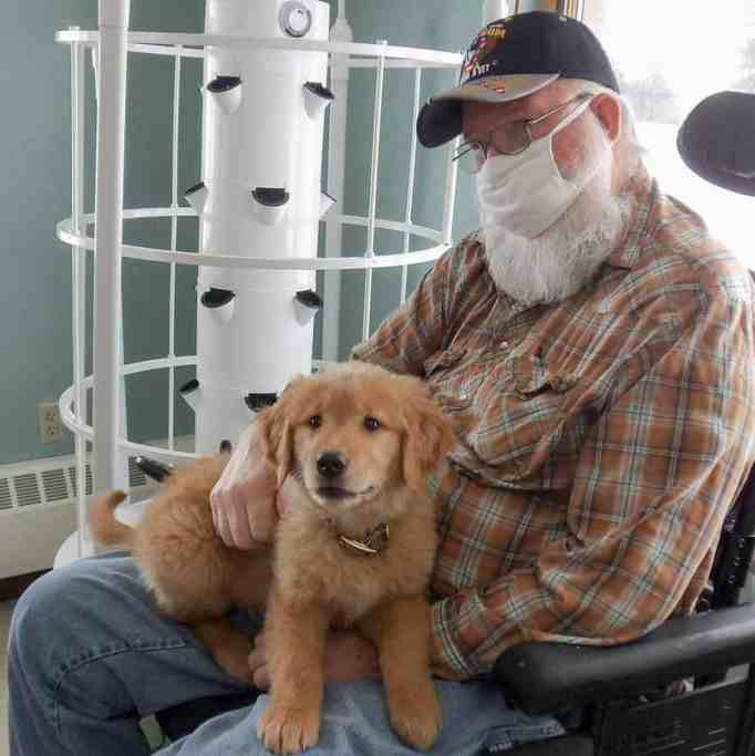 A male nursing home resident holding Gracie the golden retriever