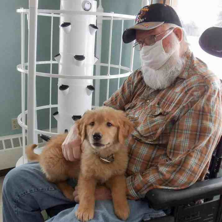 A male nursing home resident holding Gracie the golden retriever