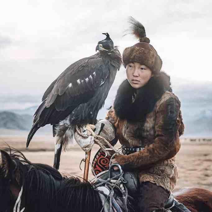 Mongolian female eagle hunter on a horse