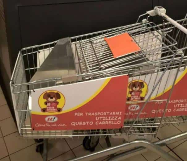 A shopping cart for dogs