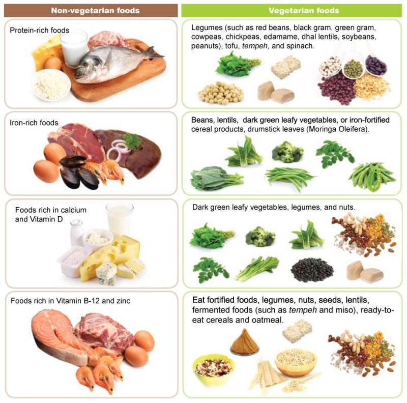 B Fortified Foods Uk