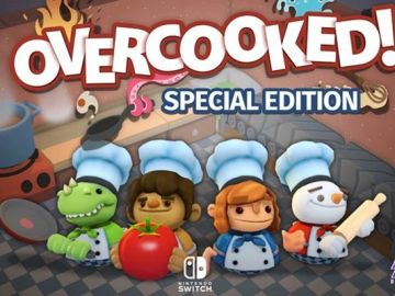 overcooked switch physical