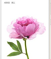 Xiaomi Mi Max Price Specs Camera Ram Images In Pakistan India China