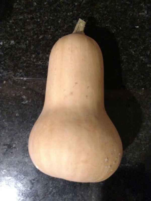 cook butternut squash