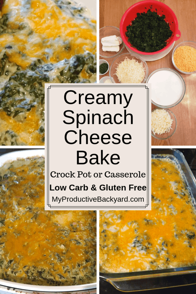 Creamy Spinach Cheese Bake