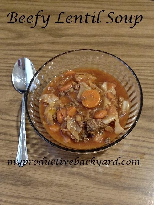 Beefy Lentil Soup