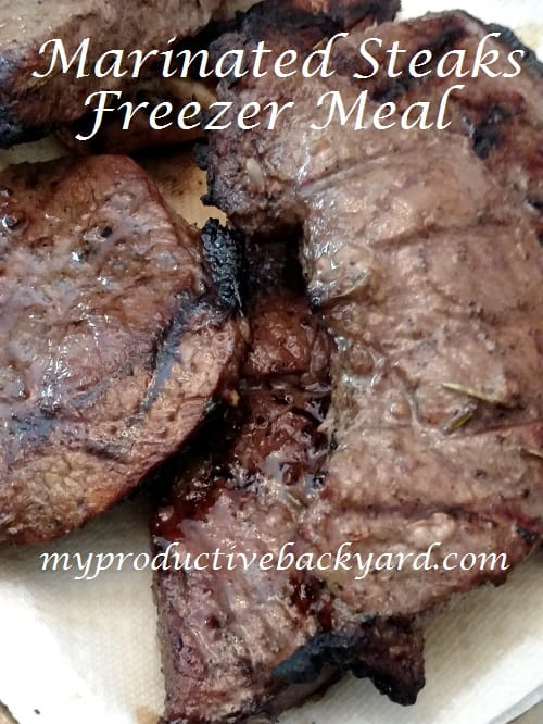 Marinated Steaks Freezer Meal