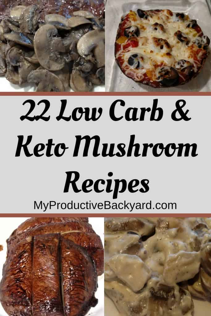 22 Low Carb Keto Mushroom Recipes