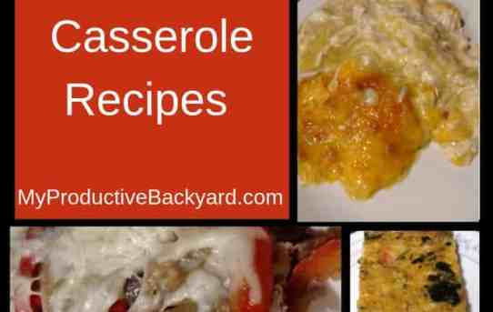 61 Low Carb & Keto Casserole Recipes
