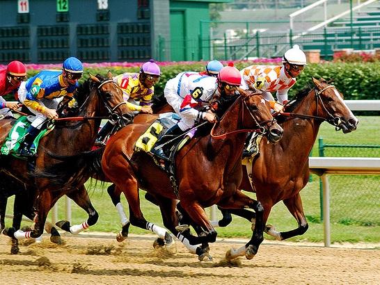 race horses churchill downs