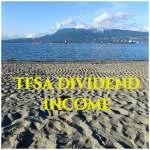 TFSA Dividend Income