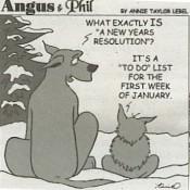 resolutions-angusandphil