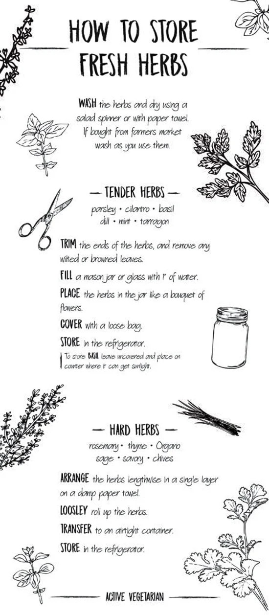 Illustration with information on how to store fresh herbs