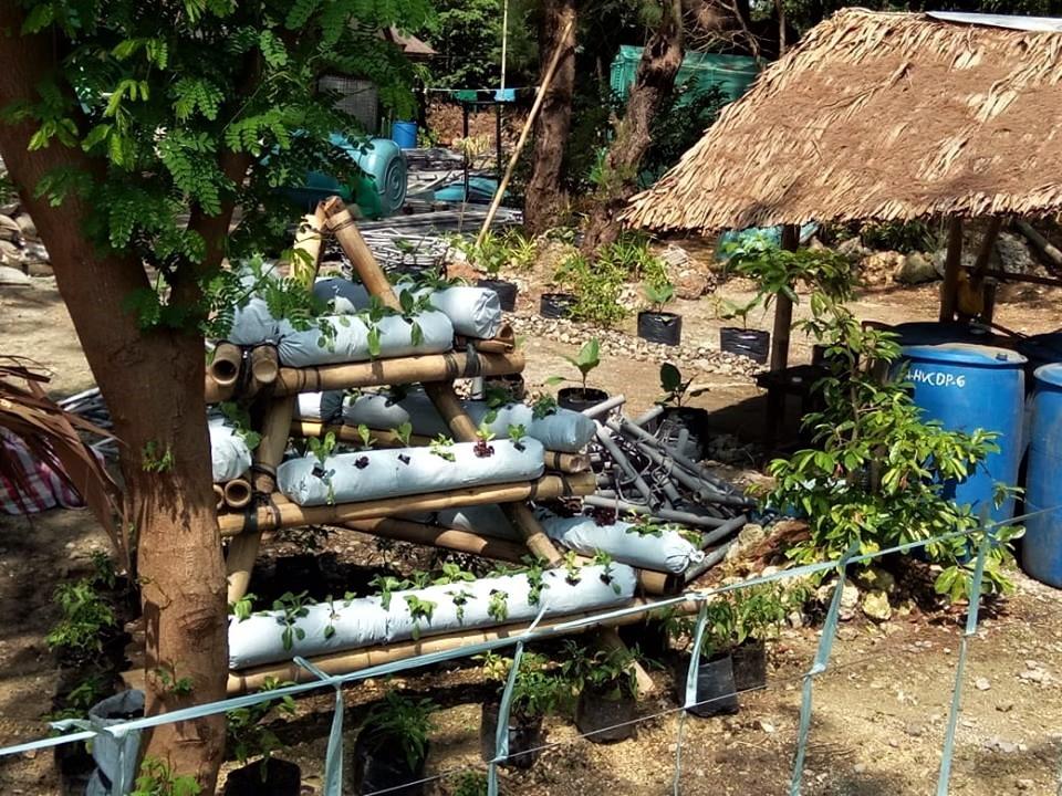 Boracay's Ati Community create a Farm Garden