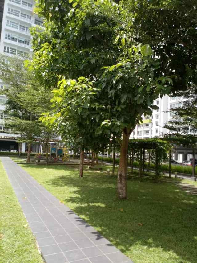 Skyvilla Garden