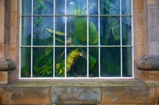 Botanic Gardens, Edinburgh