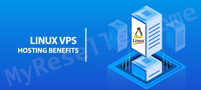 It's a Virtual Private Server (VPS) hosting and a shared server that practically mimics server management environments. VPS hosting has become a common option because it offers better reliability, security, and efficiency than shared hosting.