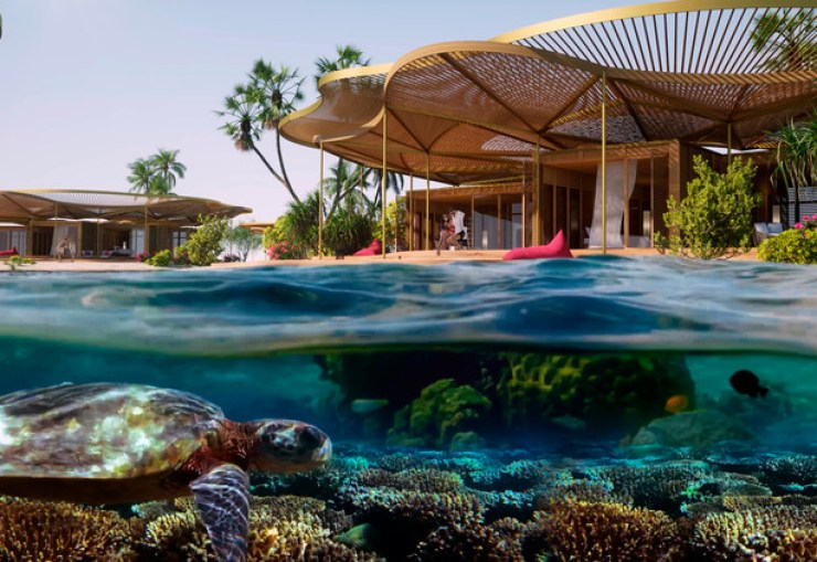Coral Bloom Red Sea Project, Saudi Arabia
