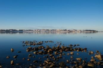 Stenar i fjorden