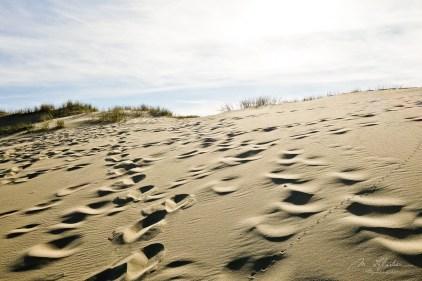 dunes in Nida