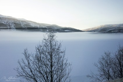 view of a fjord from the train from Bergen Norway