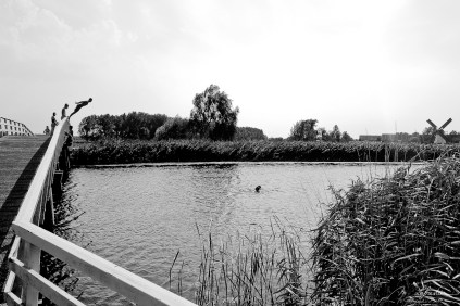 kids jumping in the canal at Kinderdijk, Netherlands