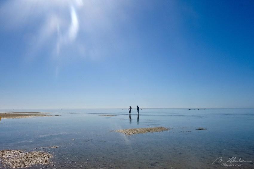 it feels like walking on the sea in Pansy Island...