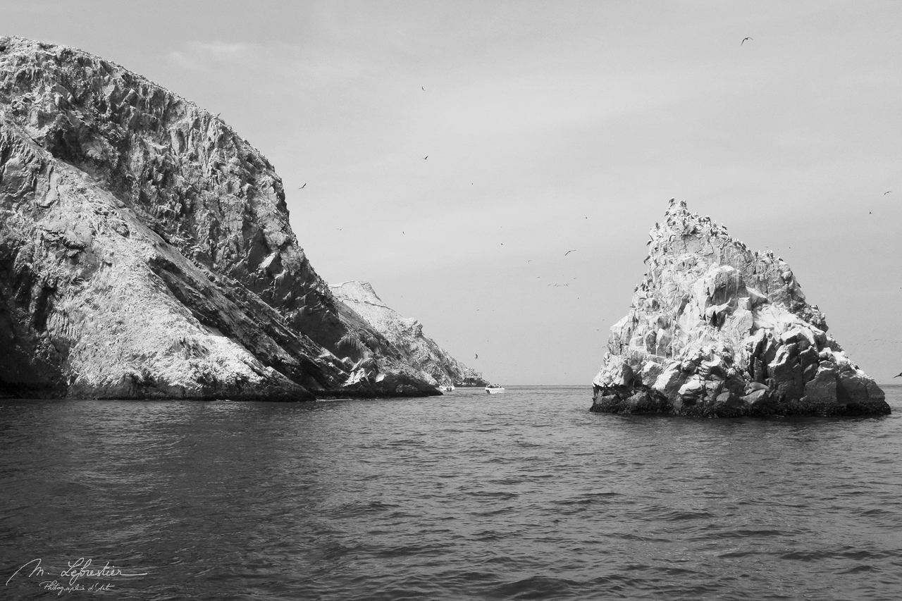 Islas Ballestas Peru Galapagos islands view