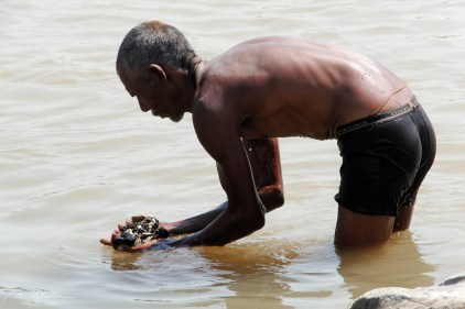 a local man is in the Narmada river picking up rocks from the bottom of the river at Marble Rocks central India