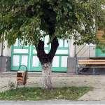 an old street litter bin in Armenis, Romania