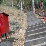 a red litter bin at the bottom of 1500 stairs to get to the real Dracula castle in Poenari Romania