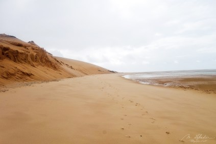 beautiful sand dunes by the indian ocean in Bazaruto island Mozambique