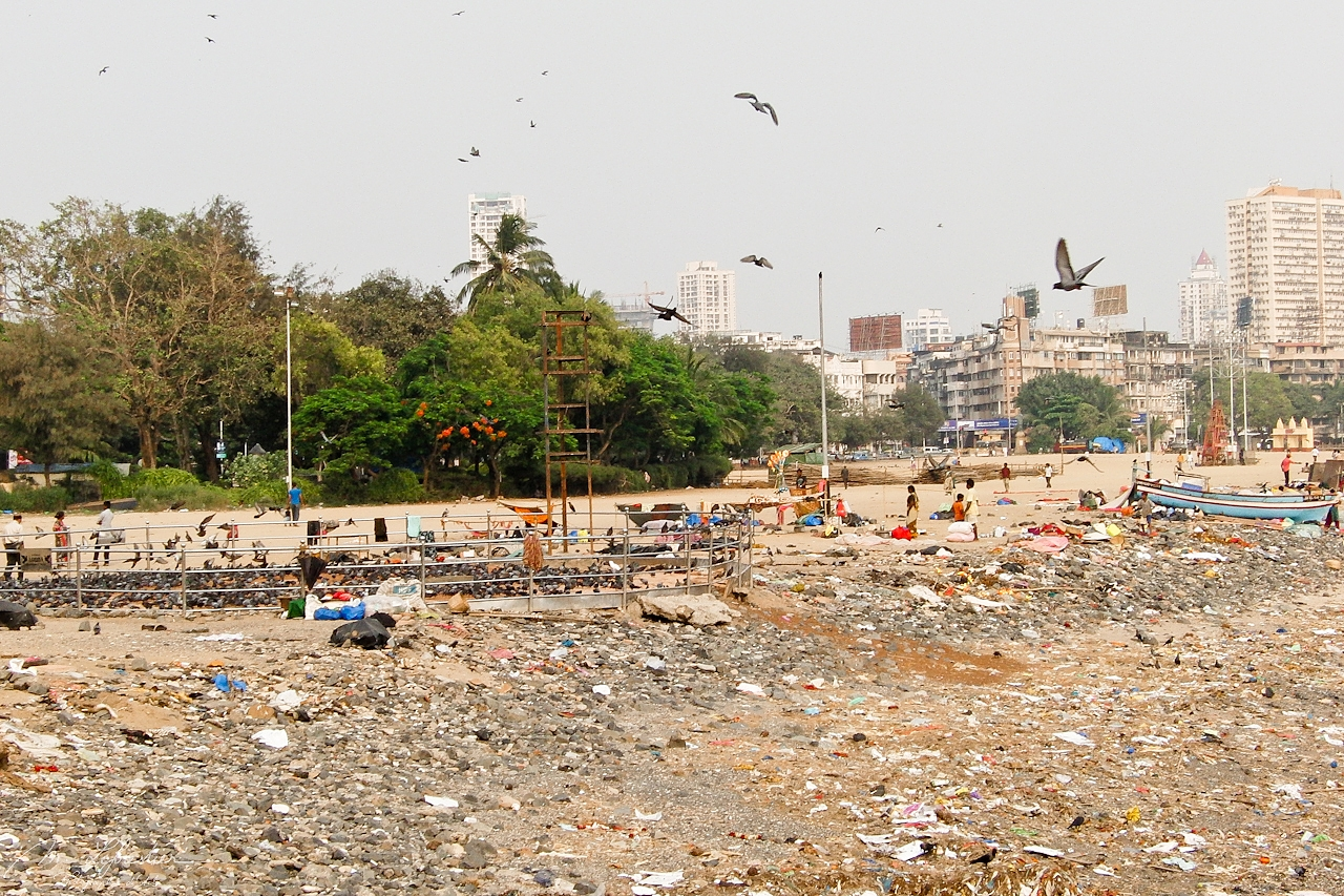 The Versova beach in Mumbai was once full of plastic. It has now been cleaned up thanks to the efforts of Afroz Shah