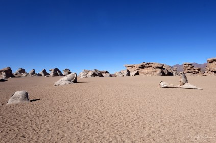 rock formations landscape, formed by wind erosions in the desert in Bolivia