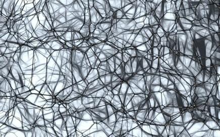 Neuron - Study