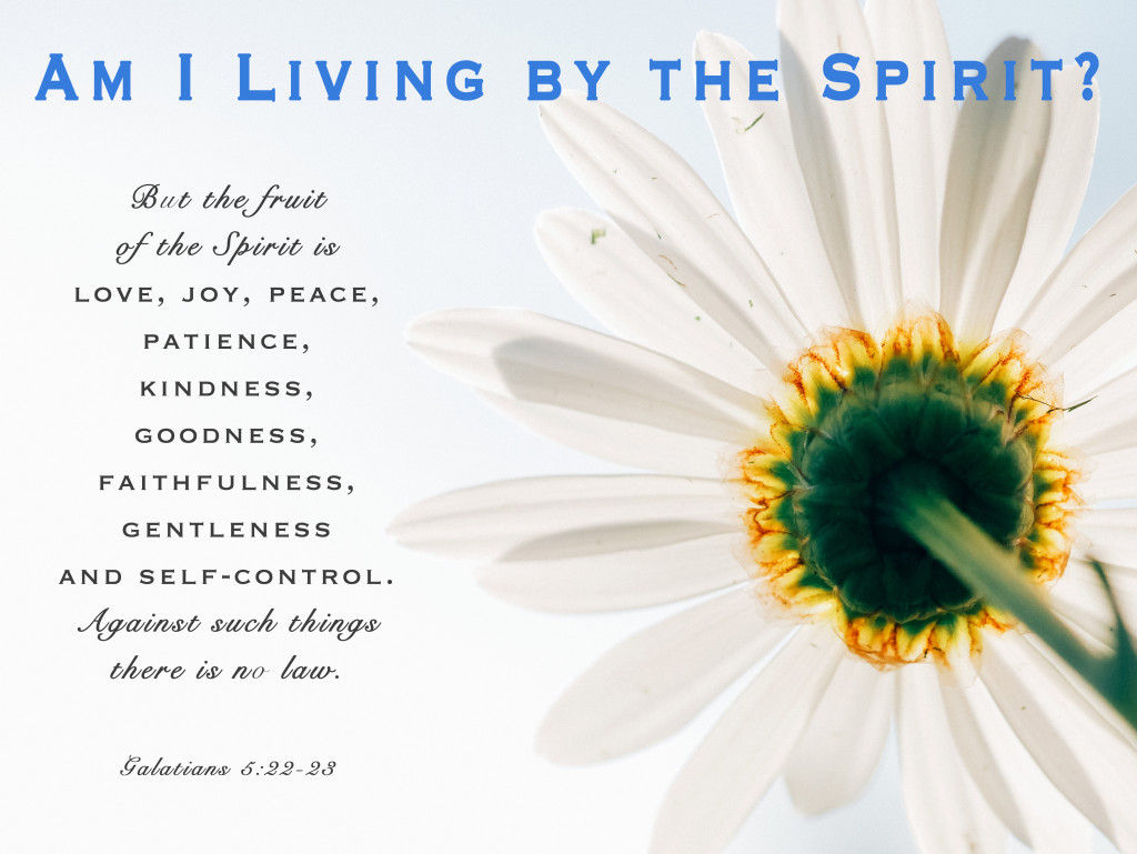 Weekly Wisdom: Am I Living by the Spirit?