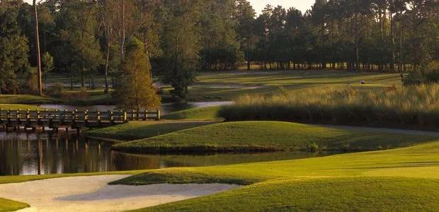 Tigers Eye Golf NC Reviews