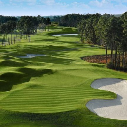 Wild Wing Golf Myrtle Package Save