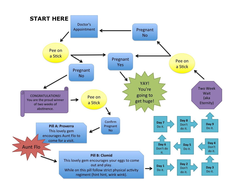 Our Current Pregnancy Process Flow Chart