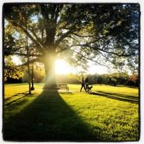 My run view 10/27/13 - Loose Park in Kansas City, Mo.