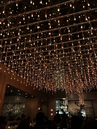 Ceiling of Twinkling Lights