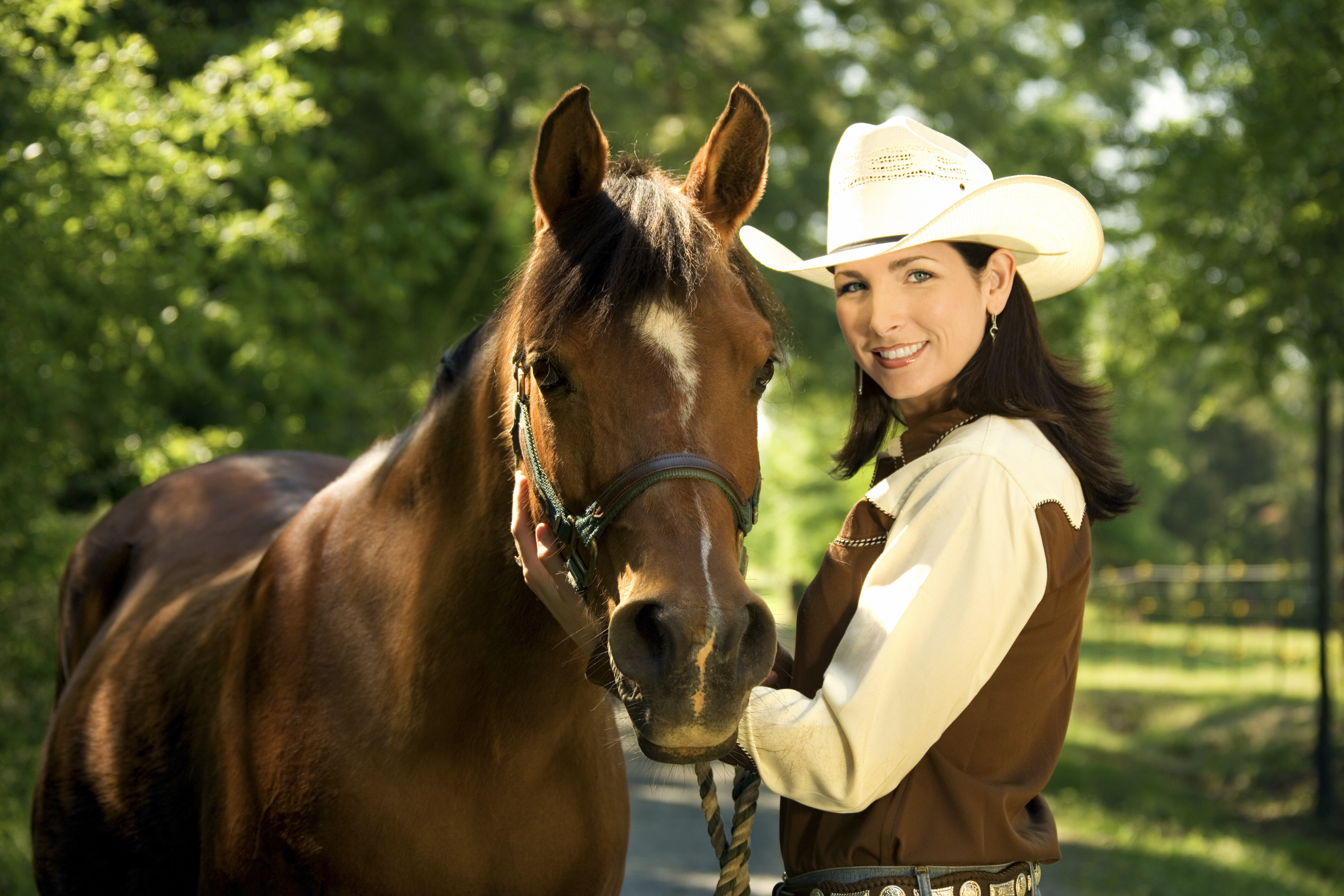 Best Equestrian Campgrounds In Arizona