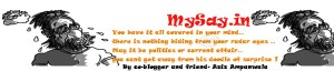 mysay.in,wp header,cartoon,